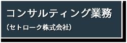 コンサルティング業務(セトローク株式会社)